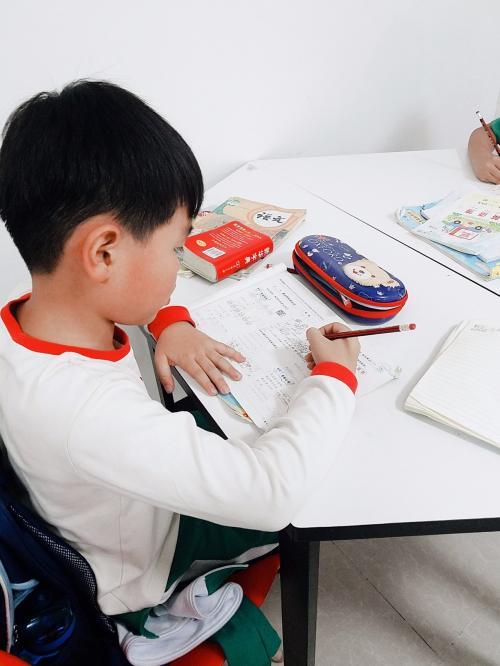 暑期卓越计划: 电影梦工场(8-14岁儿童)