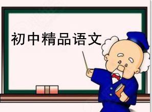 初中精品语文课程