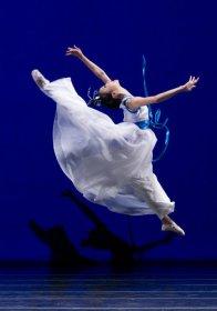 中国舞(六级)