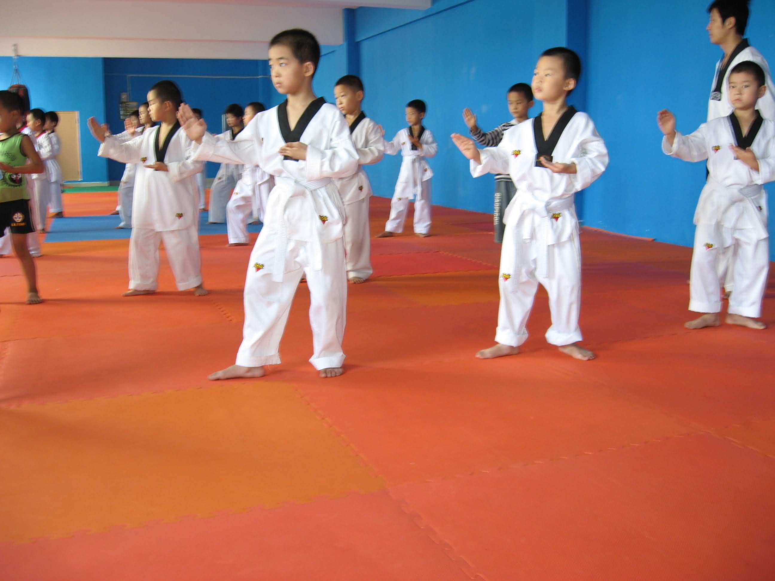跆拳道初级1班寒假班