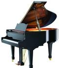 专业钢琴培训