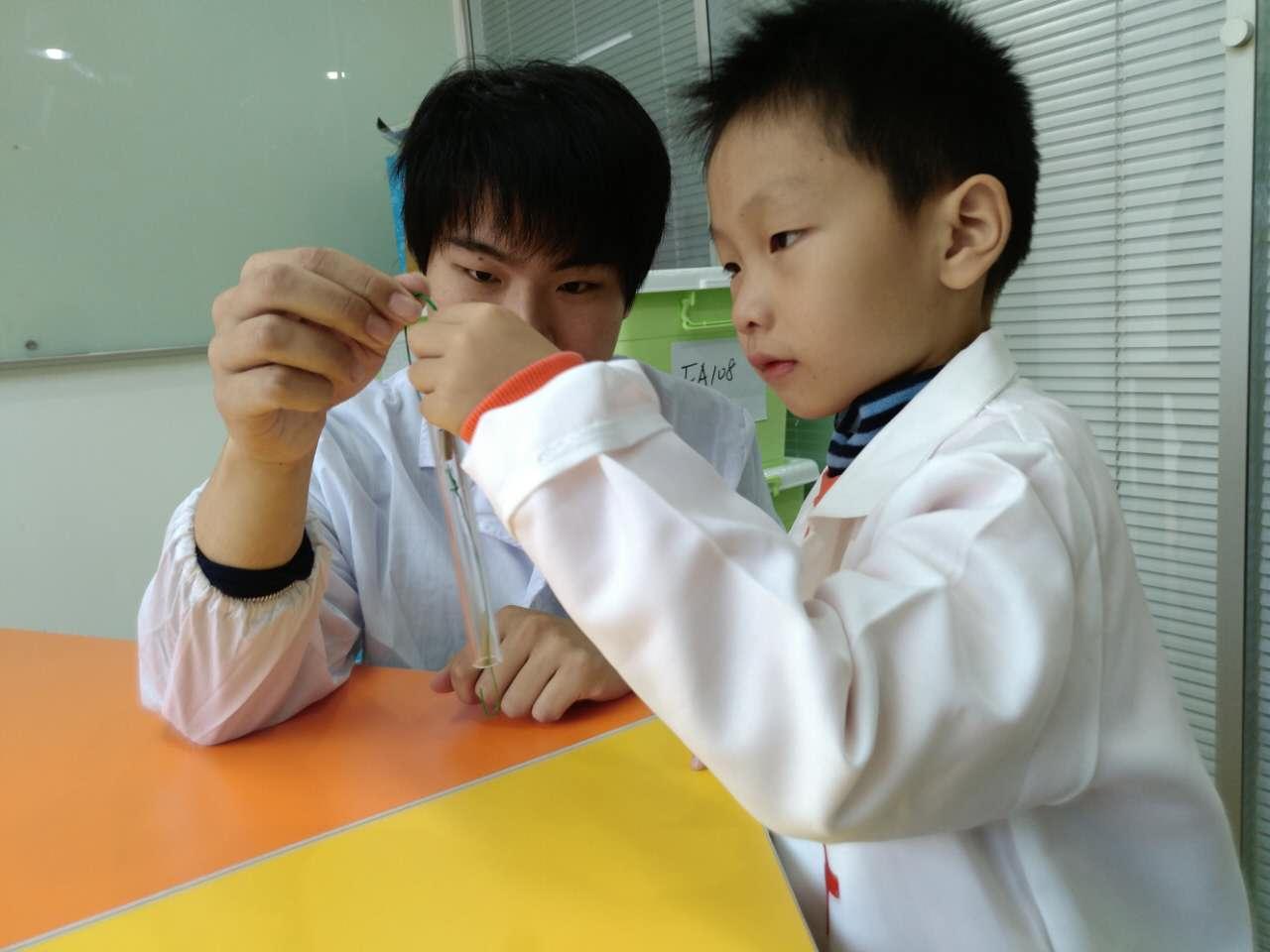 小小科学家科学实验班