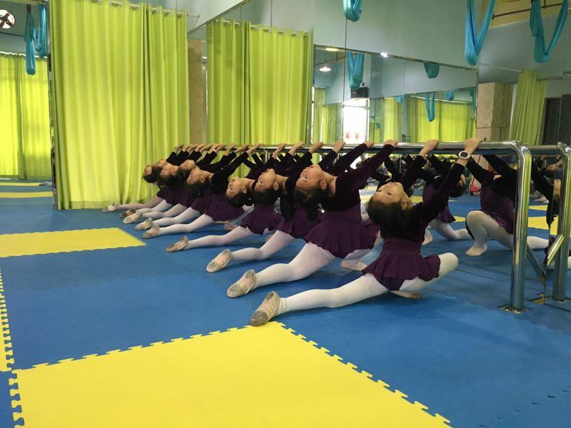 成人形体舞--中国舞