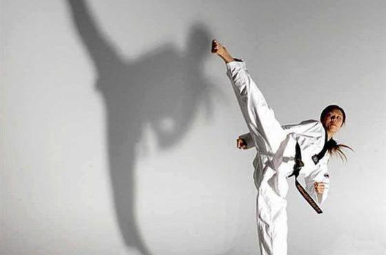 跆拳道精英课程[转发有奖]图片