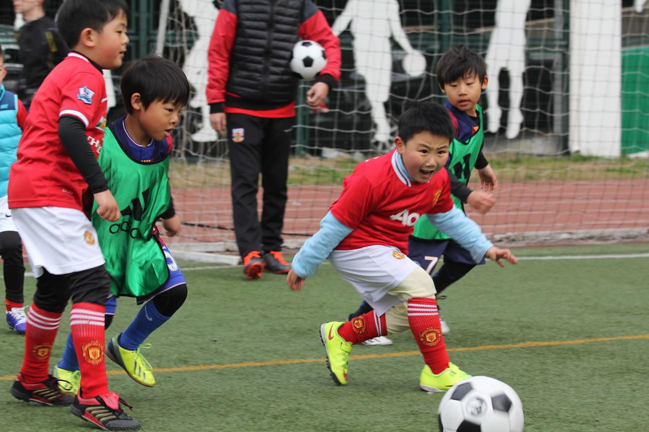 冠军少儿足球  B年龄段班