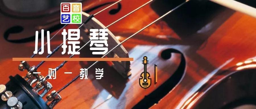 百音小提琴