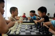 国际象棋(4岁以上)