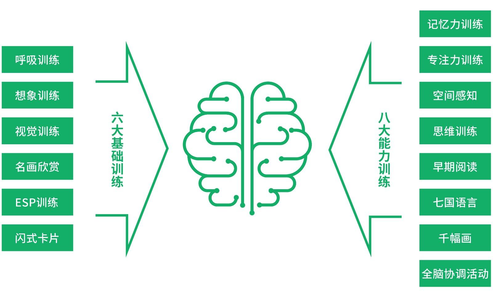 全脑力-2.jpg